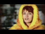 Лакмус   ___   Пузырьки  (  Full HD  )
