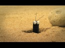 Minuscule - Season 2 (30 minutes Compilation) 5