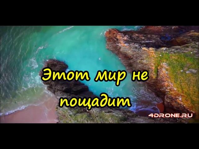 БУКТРЕЙЛЕР - Дикий мир (София Хомутова)