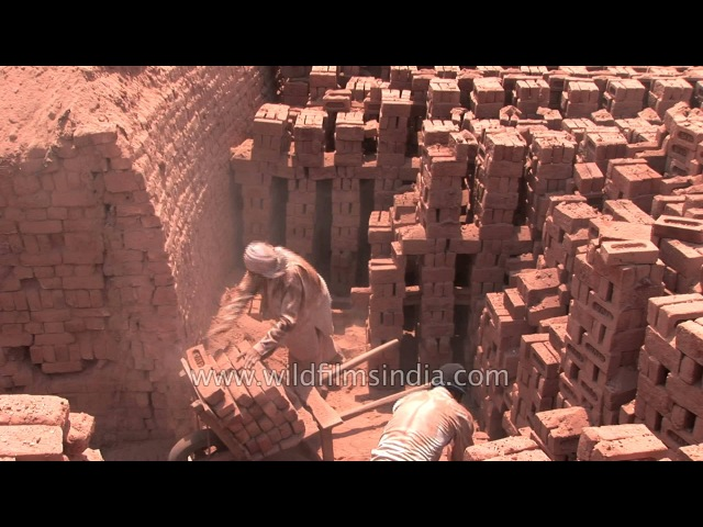 Labourers pile up bricks at a brick kiln in India