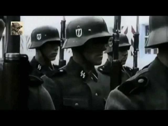 Radical Hungary Sturmführer