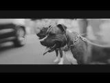 Infinit feat. Haze  Anderes Kaliber (prod. Melbeatz &amp Jumpa)
