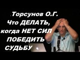 Торсунов О.Г. Что ДЕЛАТЬ, когда НЕТ СИЛ ПОБЕДИТЬ СУДЬБУ