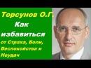Торсунов О.Г. Как избавиться от Страха, Боли, Беспокойства и Неудач