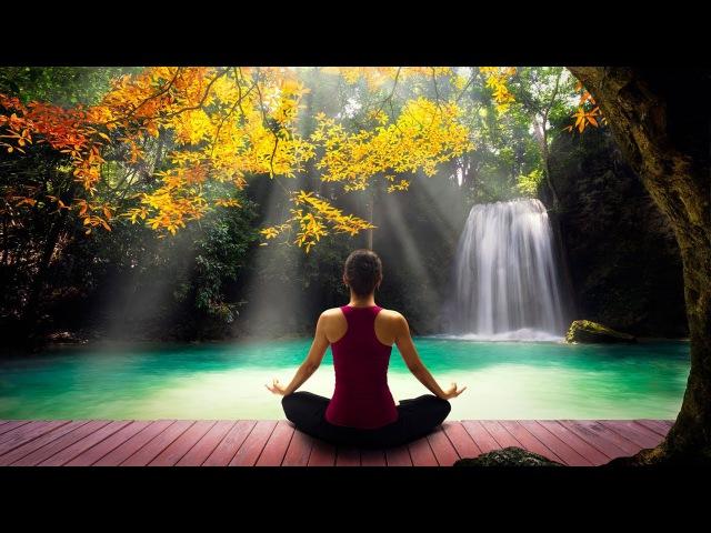 Música Para Relajarse com Flauta Indigena y Sonidos de la Naturaleza - Relajar la Mente y Dormir » Freewka.com - Смотреть онлайн в хорощем качестве
