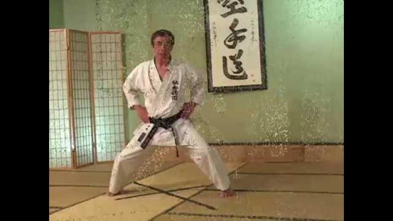 Hirokazu Kanazawa - Shotokan Karate _ Dachi - Stance