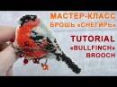 Брошь Снегирь Вышивка бисером на канве Tutorial Bullfinch Brooch Eng Subs