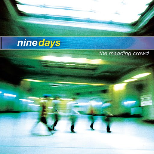 Nine Days альбом The Madding Crowd
