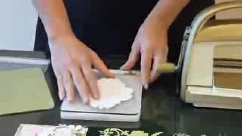 Cuttlebug Die cutting embossing
