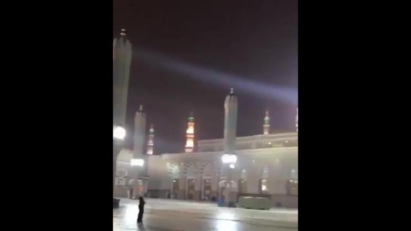 ورقـاء رقّـت صـبوة فترقرقت ** نـهـراً عـلاه مـن الوفاء صفاء  أجمل مشهد   المسجد النبوي  ١٤٣٩ ٣ ٣هـ  المدينة المنورة 