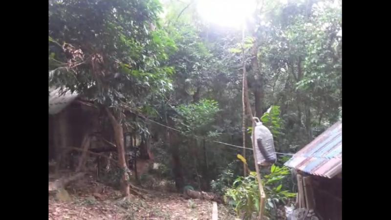 палм бич пайам 3
