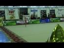 Открытый традиционный турнир по художественной гимнастике Сибирские звёзды