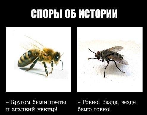 Kzcyi9XhIaQ.jpg