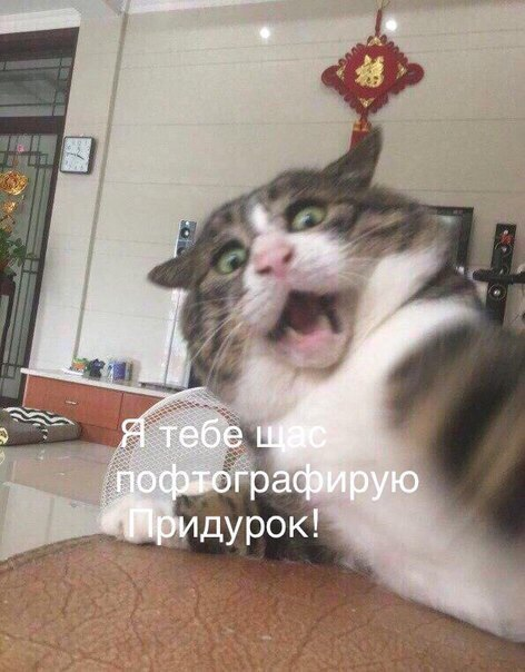 Фото №456274671 со страницы Вахтанга Антии