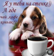 Привет!!!чай,кофе?