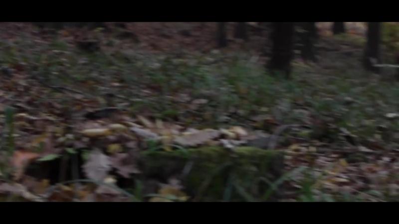 Traxxas Slash 2wd VXL w_ TSM Slow Motion Action [HD]