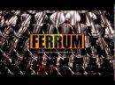 Производство дымоходов FERRUM