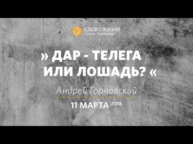 Андрей Горновский «Дар — телега или лошадь» «Слово Жизни» г. Санкт-Петербург
