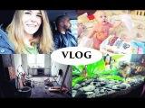 vlog как ИДЕТ РЕМОНТ, новый аквариум - Senya Miro