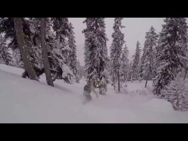 Verbier GoPro snowboarding freeride magic forest