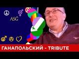 Матвей Ганапольский под музыку Mezzoforte Tribute Picrolla