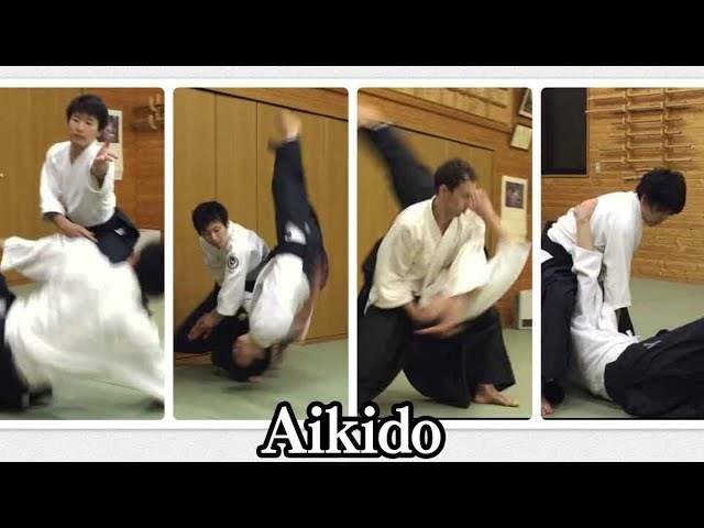 合気道 自由技で投げあう Aikido Throwing to each other