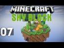 Lets Play на сервере SkyTech 7 Сменил биом