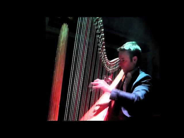 Richard Wagner - Liebestod - Sylvain Blassel, harp