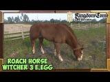 Kingdom Come Deliverance Roach Easter Egg (Witcher 3 Geralt's horse)