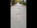Родион Венедиктов — Live
