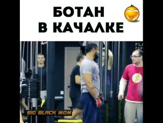 big_black_mom_Bcq_0RqHxvb.mp4