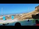 Oceanworld puerto-plata