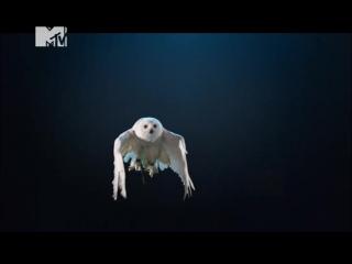 Clean Bandit feat. Louisa Johnson — Tears (MTV Music 24)