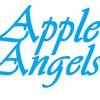 AppleAngels - Ремонт IPhone и IPad в Москве
