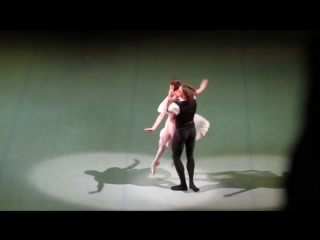 Olga Smirnova and Denis Rodkin - Lady of the Camellias