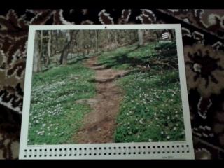 Календарь с иллюстрациями. #9