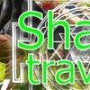 SHANTI TRAVELS | Йога-туры Мечты!