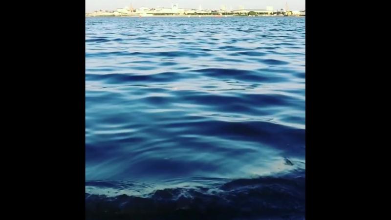 Если море плещет в твоей душе, то непременно пойду... Казань 24.08.2017
