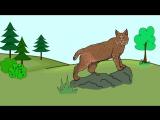 Мультфильм про животных. Развивающие мультики для детей до 4 х лет. СБОРНИК 2