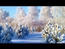 Зима скоро закончится!