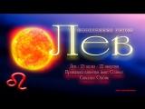 Знак зодиака Лев Гармония и баланс Изохронные ритмы