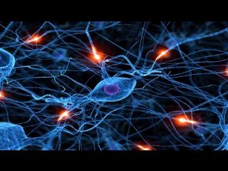 Мозг с Дэвидом Иглменом (3) Кто контролирует? (2015) The Brain with Dr. David Eagleman (док. сериал) 720