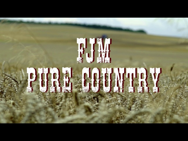 Father John Misty - Pure Country [Audio]