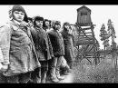 Репрессии 1920-50-х гг. СССР первые 20 лет, часть 9