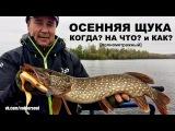 Ловля щуки. Рыбалка в октябре. Поиск хищника на осенней реке. Видео отчет от 4.10.2017
