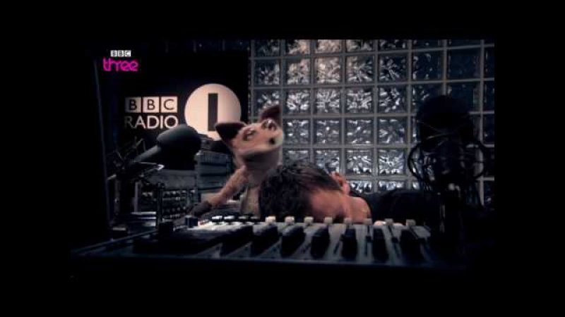 Scott Mills - Mongrels - Ep 5 - BBC Three