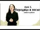 Сербский для начинающих Урок 2 О себе семья и работа