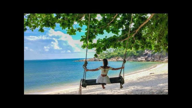 Cel mai mare copac din Tailanda || Travel Diary 14