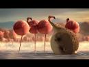 ROLLIN SAFARI - Flamingos - Official Trailer FMX 2013