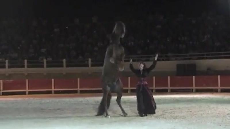 Мадам на лошадке, загляденье